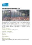 La forêt départementale de la Roche Turpin
